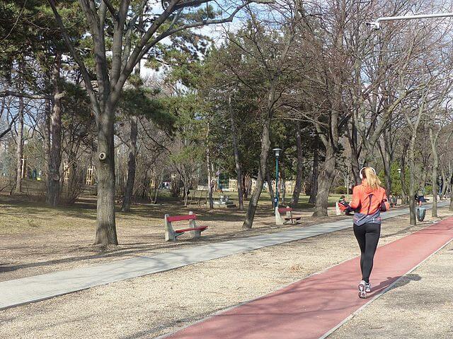 Pistă de alergare în parc