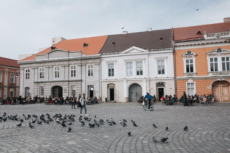 Cum putem schimba mobilitatea în Timișoara după pandemia de Covid-19